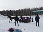 Катание на лошадях с 1 по 5 января 2017 г.