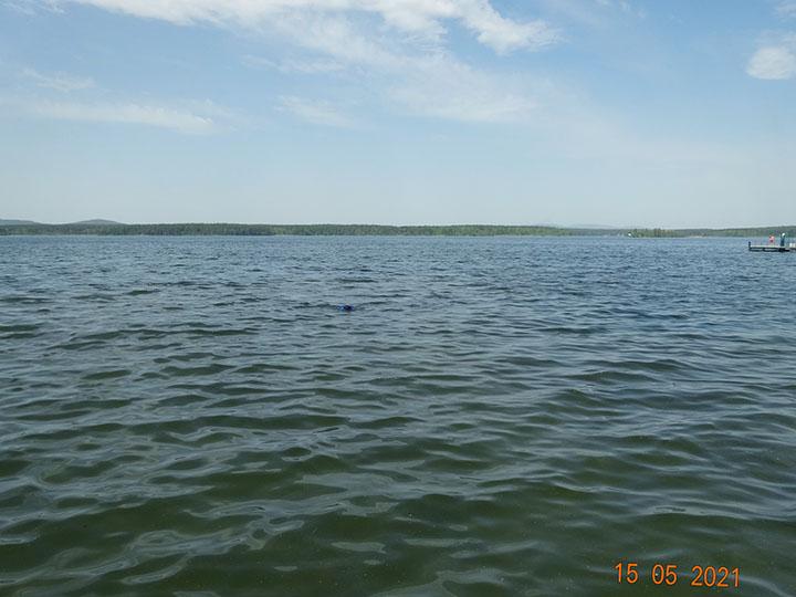 15 мая 2021 г. Очистка дна водолазами акватории пляжа Закрытого поселка Еланчик